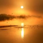 Page_deroulante